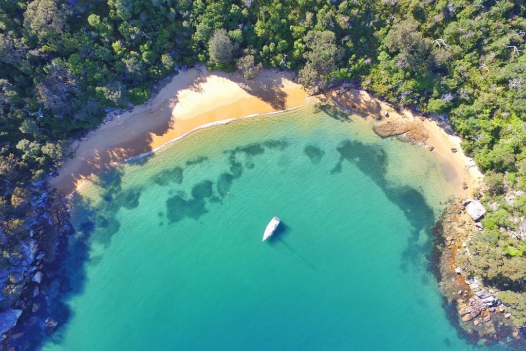 aerial shot of store beach