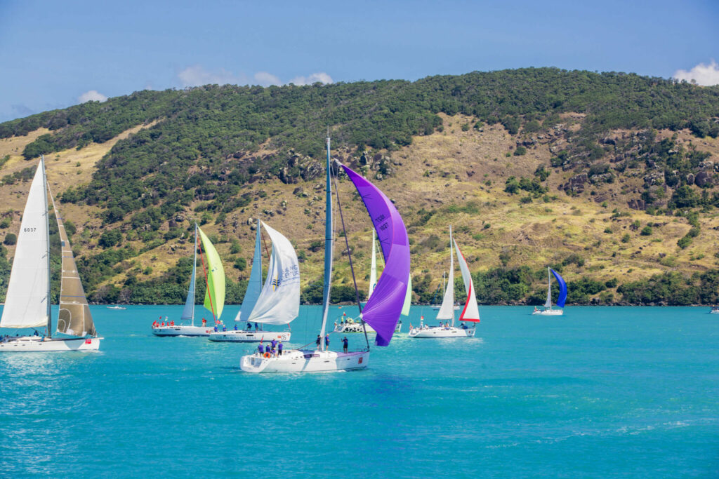 boats at Airlie Bach race week