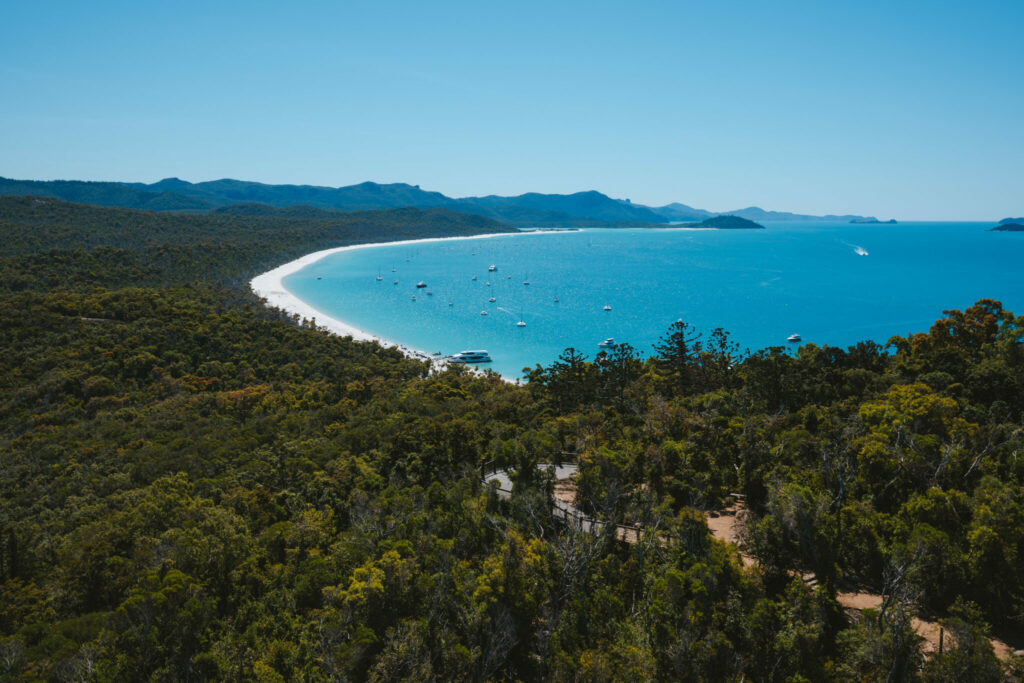 view from lookout at Whitehaven Beach